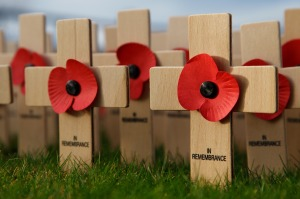 -absolutely_free_photos-original_photos-remembrance-day-4859x3239_13251