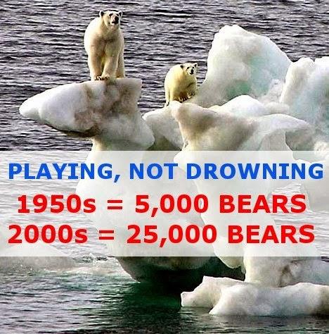 Polar-Bears-2