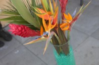 "Those ""appropriated"" birds of paradise looked great added to the tropical bouquets that framed the ceremony"