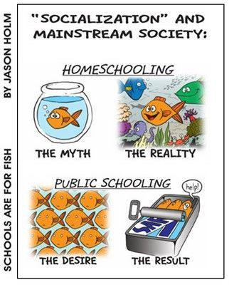socialization-myth